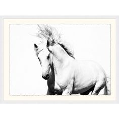 White Horse wallpaper mural bedroom photo wall murals Animal decor for sale Canvas Art Prints, Painting Prints, Canvas Wall Art, Framed Prints, Paintings, White Arabian Horse, Horse Wallpaper, Horse Print, Animal Decor