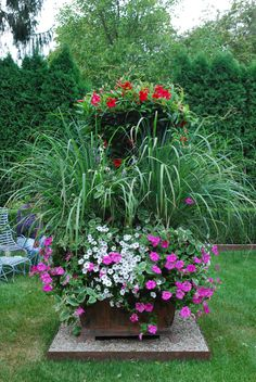 Another gorgeous urn of mixed flowering plants