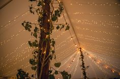 Marquee fairy lights   Keeble Wedding Collection Photo By Big Fish Photography