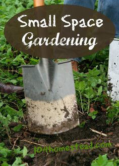 Discover ways to garden in small spaces. With a little creativity and ingenuity, you can provide for your family even in the smallest of small spaces.