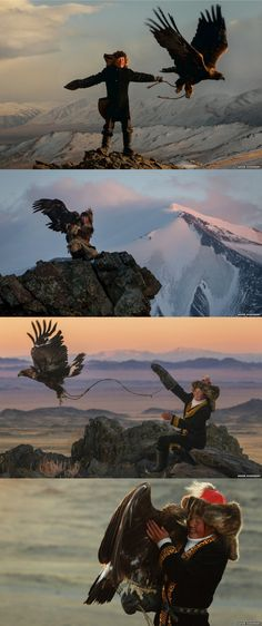 The Kazakhs of the Altai mountain range in western Mongolia are the only people that hunt with golden eagles, and today there are around 400 practising falconers. Ashol-Pan, the daughter of a particularly celebrated hunter, may well be the country's only Amor Animal, Mundo Animal, Mongolia, Eagles, People Around The World, Around The Worlds, Cultures Du Monde, Memes Arte, Altai Mountains