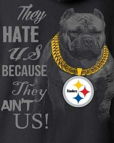 Pittsburgh Steelers Pictures, Pittsburgh Steelers Wallpaper, Pittsburgh Steelers Football, Pittsburgh Sports, Dallas Cowboys, Pitsburg Steelers, Here We Go Steelers, Steeler Nation, Detroit Lions