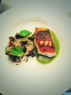 Gulf Snapper with soured oats, chanterelle, dill, nasturtium at NICHE Group Meals, Tuna, Fish, Meat, Pisces, Atlantic Bluefin Tuna