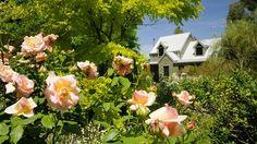 Stay at Brigadoon Cottages. Melbourne, Floral Wreath, Loft, Cottage, Wreaths, Holiday, Plants, Garlands, Flower Crowns