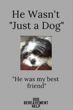 Dog Bereavement / Pet Loss / Grief / Poem / Goodbye my Friend /