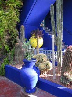 Morocco Part 1 – Jardin Majorelle Marrakesh, Marrakech Morocco, Dream Vacation Spots, Dream Vacations, Blue Garden, Tropical Garden, Morrocan Theme, Palaces, Moroccan Garden