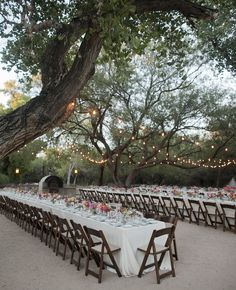 Outdoor reception with long banquet tables and hanging market lights // Mel Barlow & Co