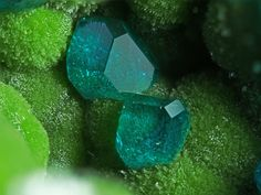 Dioptase on Duftite from Tsumeb, Namibia Field of view Photography by Joy Desor Minerals And Gemstones, Rocks And Minerals, Green Gemstones, Beautiful Rocks, Cool Rocks, Mineral Stone, Rocks And Gems, Gemstone Colors, Stones And Crystals