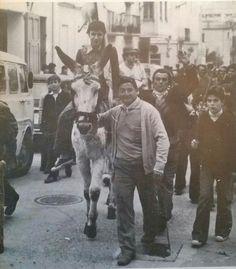 Bernat a Sant Antoni