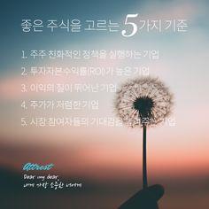 좋은 주식을 고르는 5가지 기준