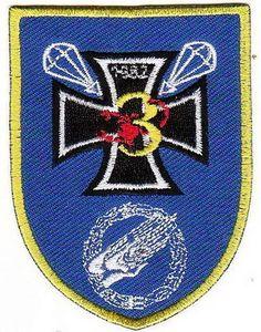 Bundeswehr Aufnäher Patch 3. Kompanie Fallschirmjäger Btl 263