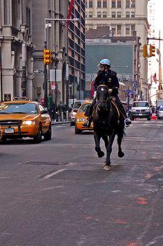 Police on horseback .