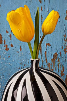 pretty art with tulips... this  really pops! by Garry Gay @fineartamerica