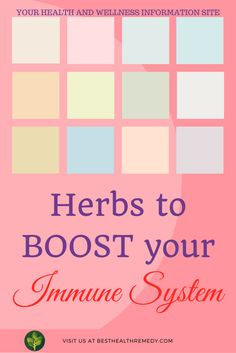 HERBS TO BOOST YOUR IMMUNE SYSTEM. Natural remedies for your immune system range from using essential oils to changing your daily habits. Another great way is to use herbs to boost your immune system. herbs to boost your immune system / #coldandflu / #naturalhealing / #remedy / #health / #healyourself / #nutrition / #immunesystem / colds and flu / cold and flu remedies / remediies for colds and flu / herbs / immune system / echinacea / elderberry / calendula / green tea