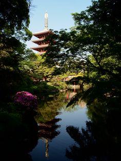 pagoda -the garden of Denbouin, Senso temple, Asakusa-