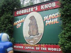 coltsguy discovered 6 more weeks of summer at Punxsutawney, PA. 2011.