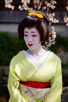 Makiko during Gion Shirakawa Yoizakura Japanese Geisha, Japanese Beauty, Japanese Kimono, Memoirs Of A Geisha, Wedding Kimono, Japanese Flowers, Japan Art, People Of The World, Japan Fashion