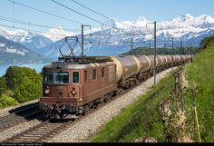 RailPictures.Net Photo: 175 BLS Lotschbergbahn Re 4/4 (Re 425) at Spiez, Switzerland by Georg Trüb