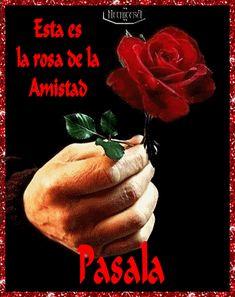 rosa-amistad.gif (396×500)