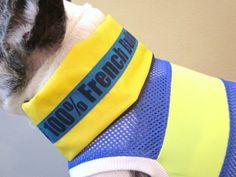 Cool Collar for French Bulldog