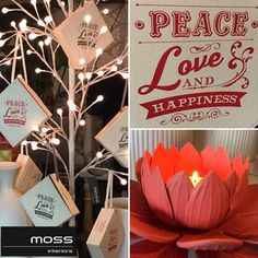 This time in 3 weeks people!!!! #mossinteriors #shop3280 #shopmoss #destinationwarrnambool #shoplocal #homewares #style #shopping #christmaslights @mossinteriors @_flowergallery by mossinteriors