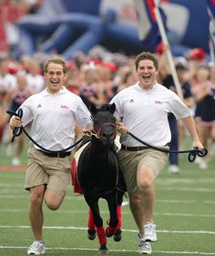 """SMU Mustang (dumbest? I think you mean """"Most Awesome"""")"""