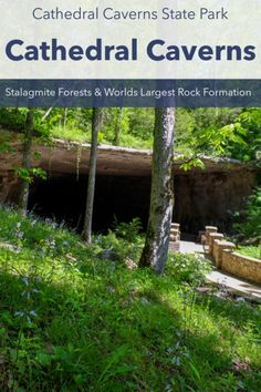 Cave Entrance, High Falls, Cave Tours, Underground Cities, Trail Guide, Autumn Park, Natural Bridge, House On The Rock, Still Photography