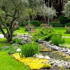 10 kompozycji roślinnych, które będą  wyglądać obłędnie w Twoim ogrodzie