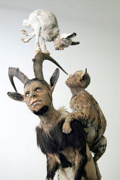Kate Clark - taxidermy sculptures