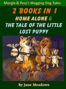 Home Alone and The Tale of the Little Lost Puppy