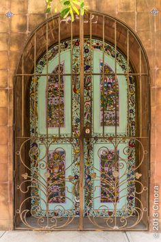 MOSAIC DOOR & DETAILED GATE...BEAUTIFUL in AJIJIC JALISCO, MEXICO