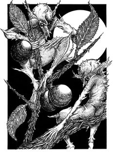 Lunatishee- Scottish myth: tree faeries that live solely on blackthorn trees. They utterly despise humans and would take any chance they get to pinch human skin with their thorn-like fingers. They worship the moon and are nocturnal.