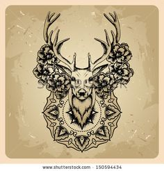 Deer Head With Big Antlers - Black And White Realistic Vector Outline - 205683694 : Shutterstock