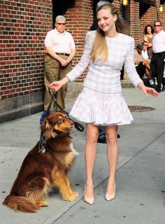 • 16 Celebrity Pets – These Guys Have It Made!