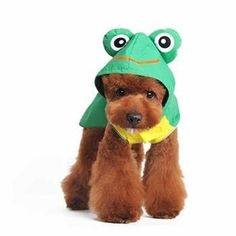 Frog Dog Raincoat by Dogo - Green. No more wet dog with this stylish Frog Dog Raincoat by Dogo!  Waterproof with froggy hoodie touch fastener straps on sides Easy to wear Leash hole  Why We Love It: Grab that raincoat for you and your pup and have no worries in rain. Waterproof raincoat with a cute frog hood and dual back pockets. Easy to wear with side touch fastener and front chest coverage. Leash hole. Has detailed frog hood with eyes that stand up. Cute for any rainy...