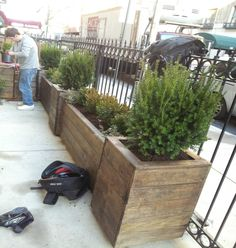 NYC Carpenters that specialize in outdoor spaces with NY Plantings Garden Designers and Landscape Contractors offer these and many other custom built wood planters and planter boxes for sidewalks, terraces and rooftop gardens. Very well made and support plants, trees and shrubs better than any planters available because we use a special drainage system. Great substitute for fencing