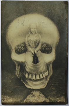 Optical Illusion Postcard - I have a very similar one but I like this Cool Illusions, Optical Illusions, Memento Mori, Crane, Hidden Images, Skull Pictures, Art Optical, Skeleton Art, Skull Face
