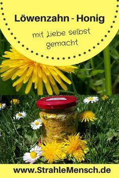 """was man aus dem Löwenzahn alles so zaubern kann, verrate ich Euch sehr gerne auf meiner Webseite. Hier zum Beispiel ein tolles """"Honig"""" Rezept (ganz ohne Bienen ;-)) #Löwenzahn #löwenzahnhonig #wildpflanzen #wildpflanzenrezepte #essbarewildpflanzen #wildpflanzenküche #essenausdernatur #fangdiesonneein #gesundesessen #strahlemensch"""