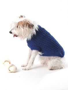 Free Pattern - Knit this dog coat for your favorite pup. Shown in Bernat Super Value. #knit