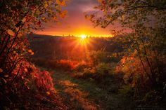 Magical Phase by FlorentCourty on DeviantArt