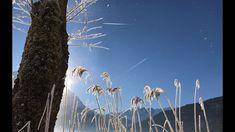 #klockerhof #familiekoch #dashotelfürentdecker #zugspitzarena #tirol #winter #schnee Winter Schnee, Mount Rushmore, Mountains, Nature, Travel, Zugspitze, Naturaleza, Viajes, Destinations