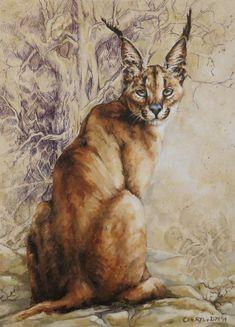 Painting of a wild caracal. Caracal, Wildlife Art, Cheryl, Van, Painting, Paintings, Vans, Draw, Drawings