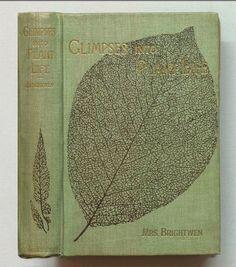"""Glimpses Into Plant Life"" antique botany book"