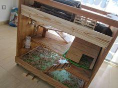 Cobayas a lo loco: Casa de madera para cobayas