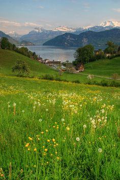 Spring in Weggis, Switzerland