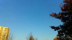 Piękny listopadowy dzień.
