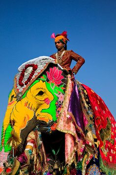 Faces of India - Man in traditional dress riding elaborately decorated elephant with colourful paint, jewels and velvets, during the annual Elephant Festival, held every March in the Pink City of Jaipur