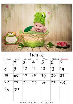 Calendar luna Iunie cu tema broscuta.