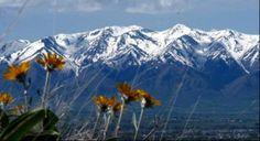 Orff Schulwerk in the Mountains - USU, June 16 -27