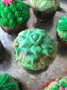 """Amazing Cactus Cupcakes my cousin who is not a pro baker made (not that you can tell!) For my 23rd """"Desert Dream"""" themed birthday.   Top is hand made butter cream icing-piped, handmade marshmallow fondant (which tastes WAY better than normal kind), gram crumble for sand, base is Pillsbury funfetti and chocolate box cake.   Total hit!"""